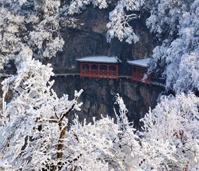 天门山开启冬季山顶游模式 天门洞景点暂时封闭