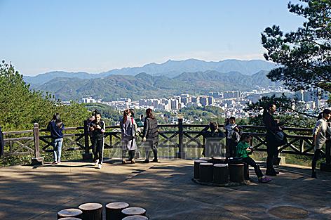 各市区公园及景区景点一派游人如织的景象