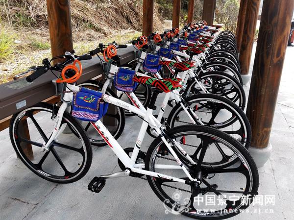 """100辆""""山地款""""自行车正式投放绿道啦"""