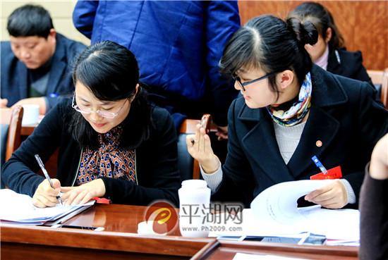 党代表分组审议两个工作报告