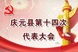 中国共产党庆元县第十四次代表大会