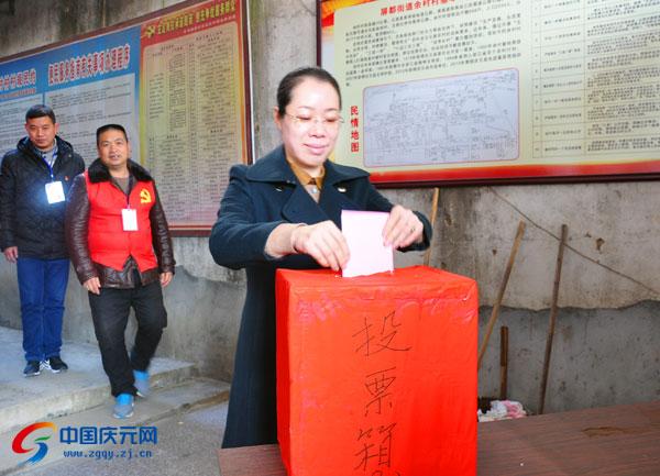 蓝伶俐以普通选民身份投票选举人大代表