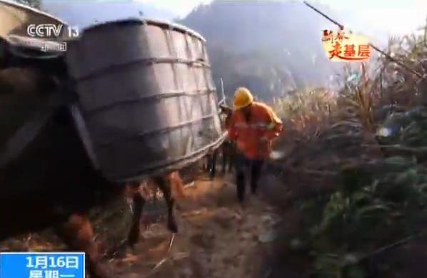 【新春走基层】江西:合福高铁线上的一支骡马队