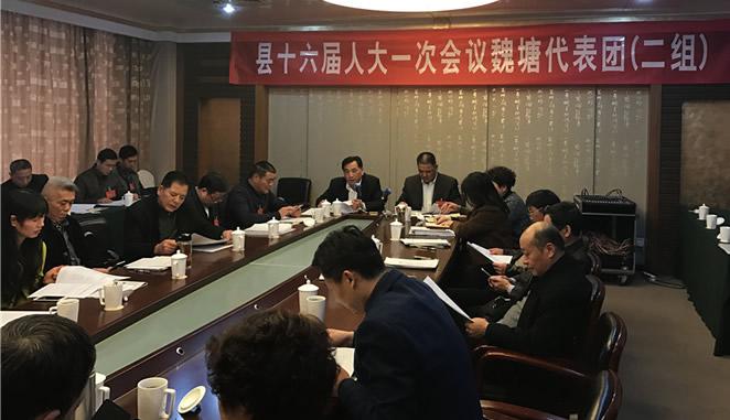 县十六届人大一次会议继续进行分团审议