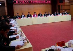 玉环县十六届人大一次会议举行代表团召集人会议