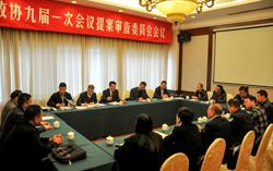 玉环县政协九届一次会议召开提案审查委员会会议