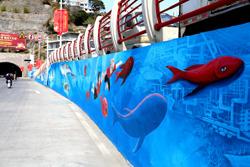 """海洋鱼类""""游""""上墙"""