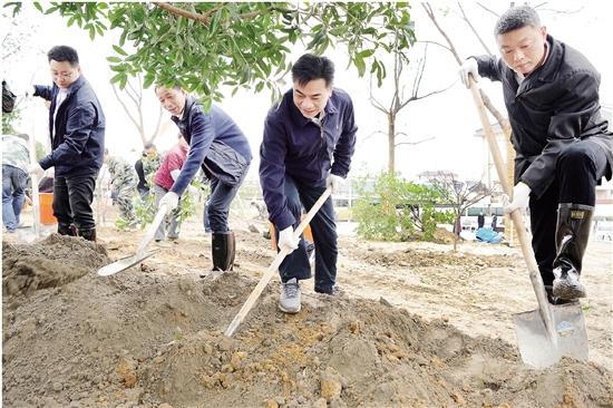 春天植树忙,为品质之城增绿添彩