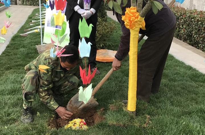"""化作一棵树与地长眠 第12位金华人选择""""树葬"""""""