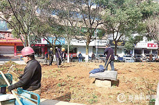 市中公园提升改造工作启动