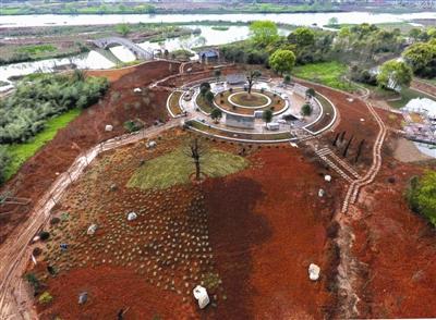 建设湿地 净化水体