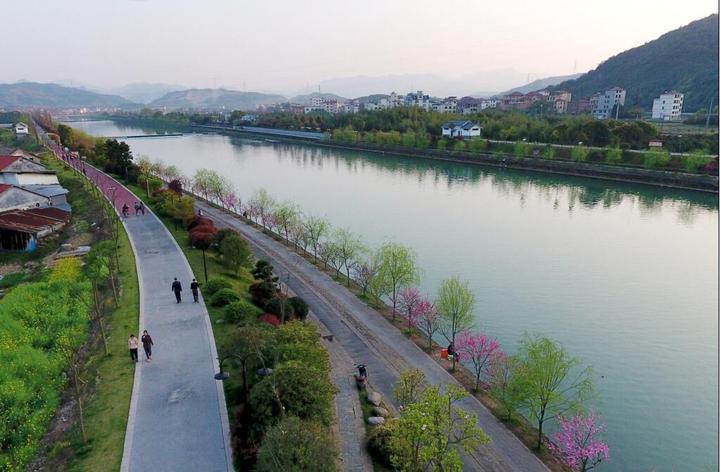 武义:花红柳绿映碧水 市民观景绿道行
