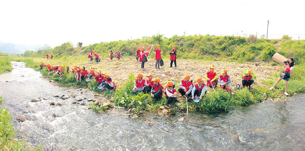 """放小鱼、清理河道......""""红领巾""""助力五水共治"""