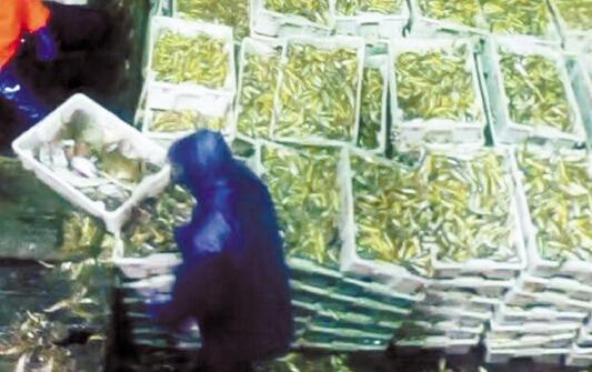 嵊泗有位渔民出海十天�捞上60万元
