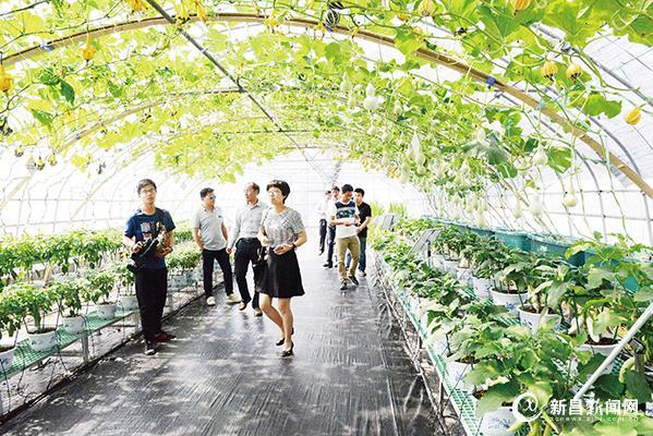 农业干部学习现代农业发展经验