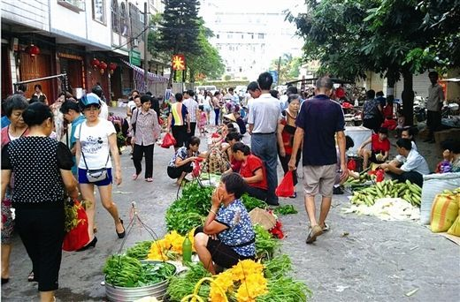 袍江马山镇5000多平方米大型违建市场被拆除图片 63394 520x342