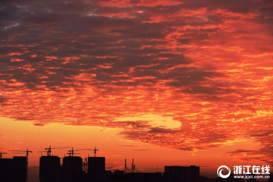 杭州:火热入伏