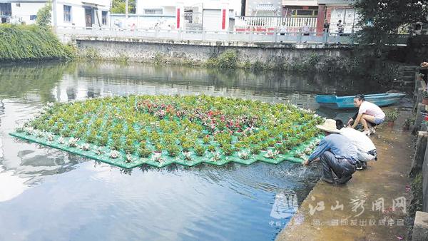 """水上""""绣花""""池塘变美"""