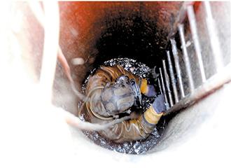 潜水作业 清捞淤泥