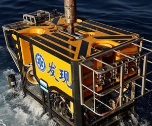 """""""发现""""号在南海采集到大量冷泉生物"""
