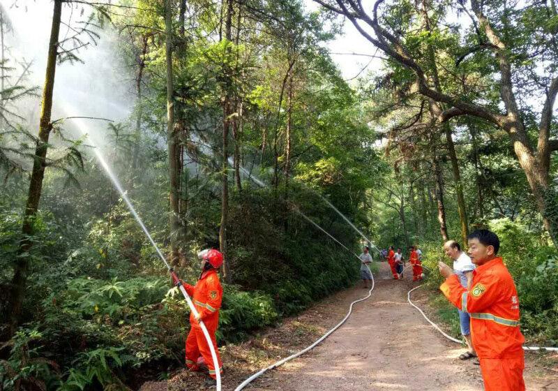 森林消防实战演练
