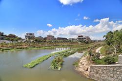 清港:周末无休 点验治水成效