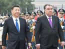 习近平同塔吉克斯坦总统拉赫蒙举行会谈