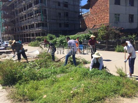 """八都镇在中心镇区开展环境卫生整治行动,切实推进小城镇环境综合整治工作,彻底消除""""脏乱差""""的现象"""