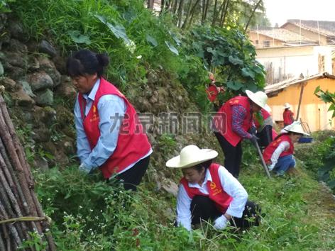 上��镇妇女自发组织开展环境卫生大整治活动