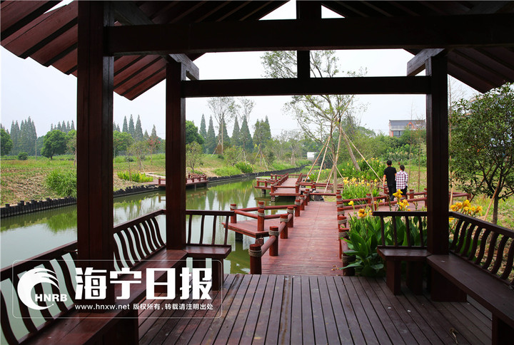 杨汇桥村把臭河道变风景线 村民爱惜得不得了