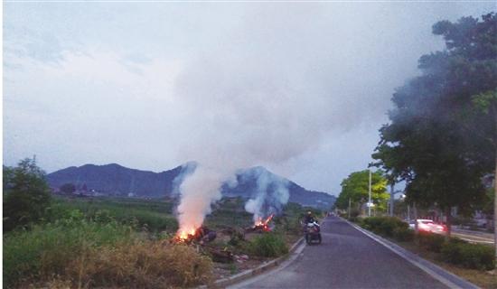焚烧垃圾 污染环境