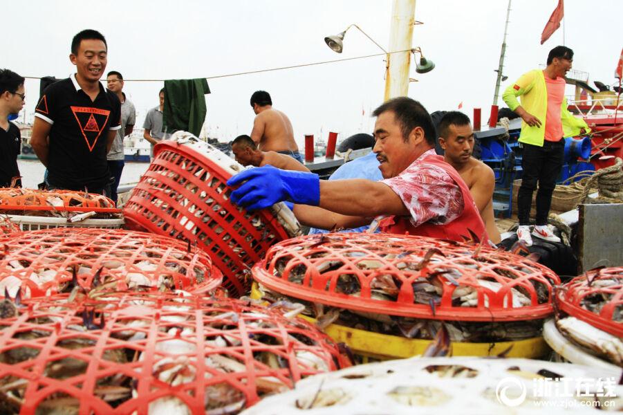 渔船回港 卸货避风