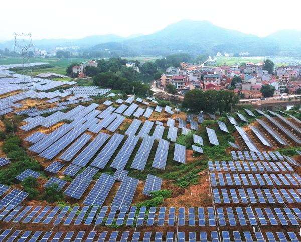 江山:顶上发电、顶下种花 华夏村探索增收新道路