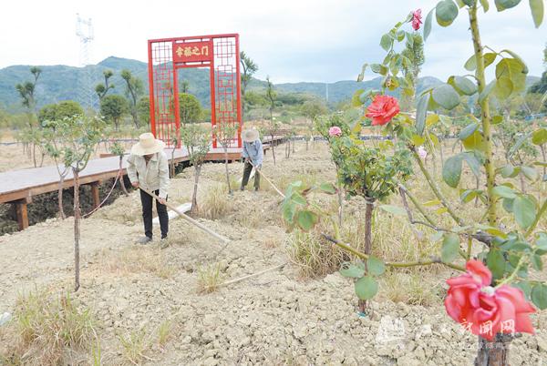 发展乡村旅游