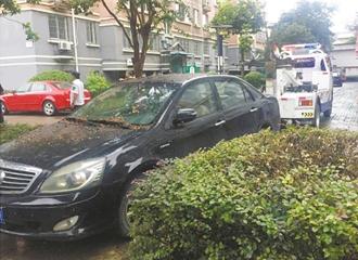 绿化带上违停车被拖离