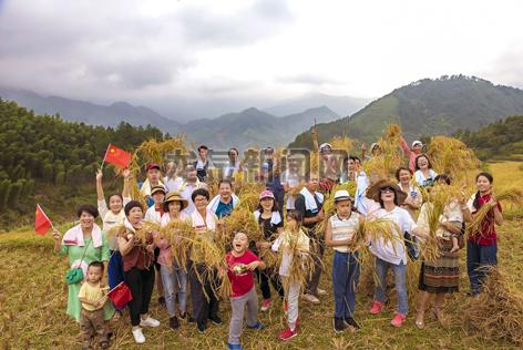 """游客在城北乡��坞村""""元�瘛庇谢�米生产基地体验农耕生活"""