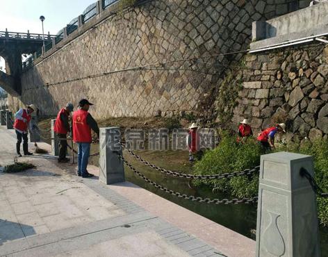 市水利局党员干部积极投身河道及防洪堤环境卫生整治工作