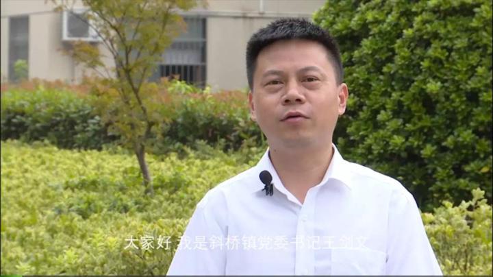 斜桥镇党委书记王剑文:干部干部 干是当头的