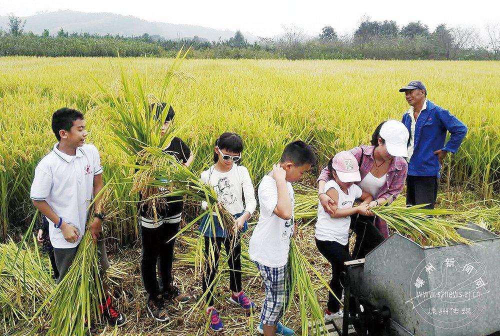 游客体验农事乐趣多