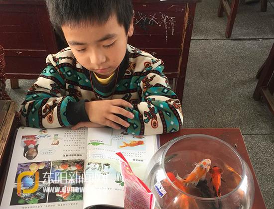 堂鹤课堂:小金鱼游进了科学小学金平区小学报名预图片