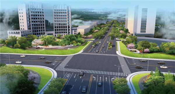 实施景观改造提升工程 金星大道要大变了