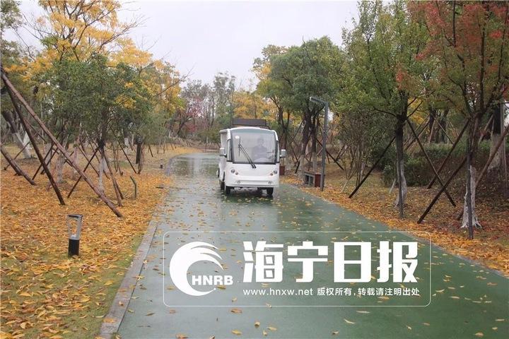 鹃湖公园游览车来了,就在本周六!