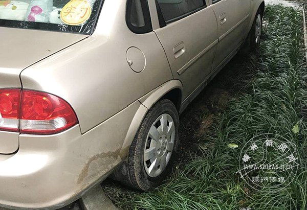 可恶!车子又停上绿化带