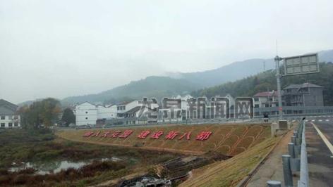 八都镇对龙浦高速入口周边破旧的灰�X、菇棚进行拆除