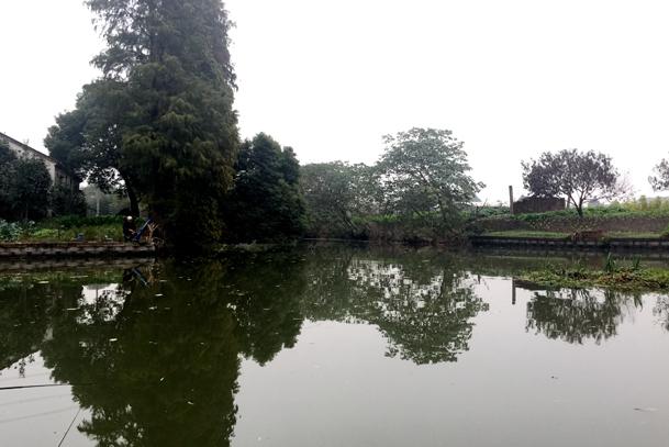 陈家村,有一座仙境里的桥……