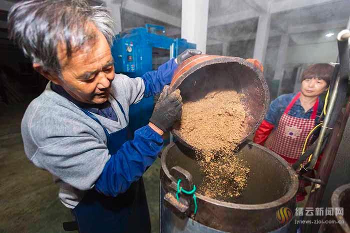 山茶油开榨忙 色泽金黄味道香