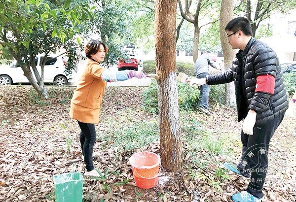 湖都义工团开展各类志愿活动 让小区更美更和谐