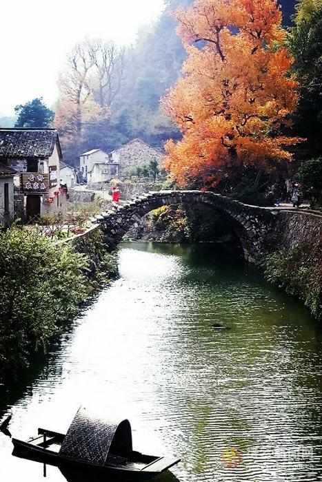 石桥碧水红枫