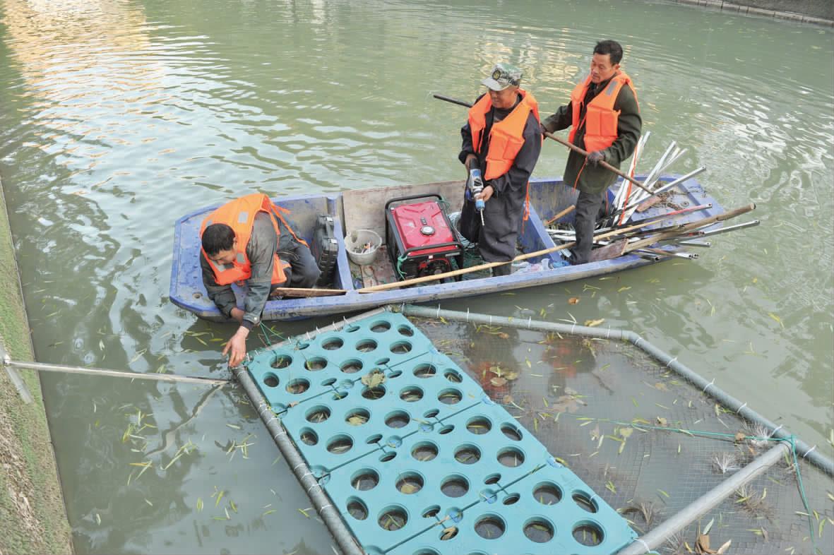 生态修复净化水质