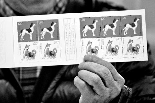 狗年生肖 特种邮票发行
